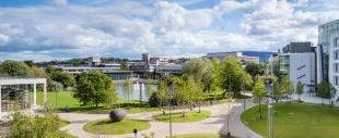 Belfield Campus, UCD